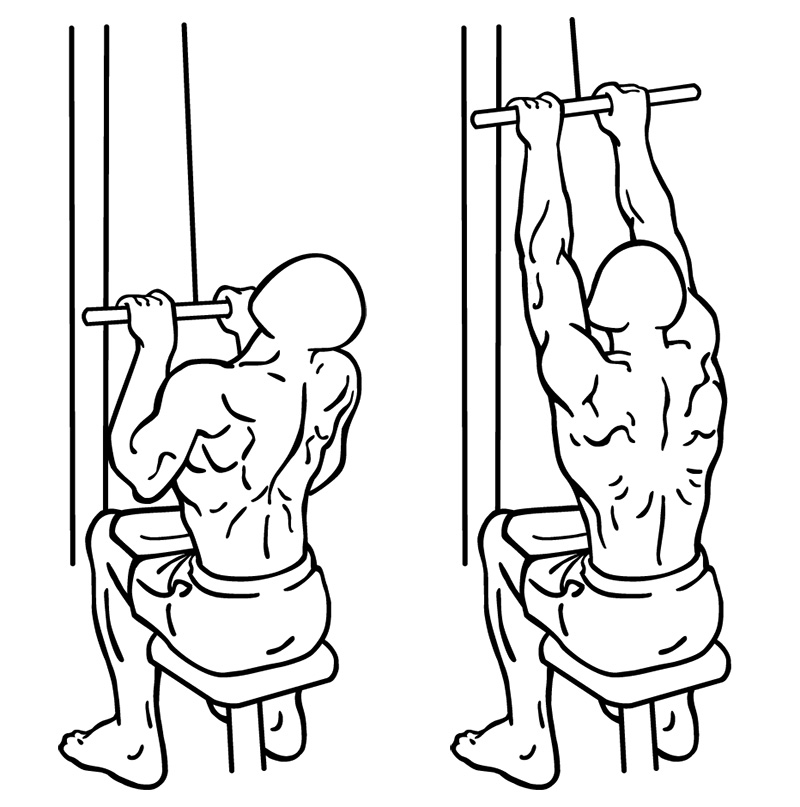 Close-Grip-Lat-Pull-Down